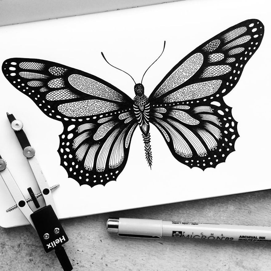 Sketch of butterfly with pen