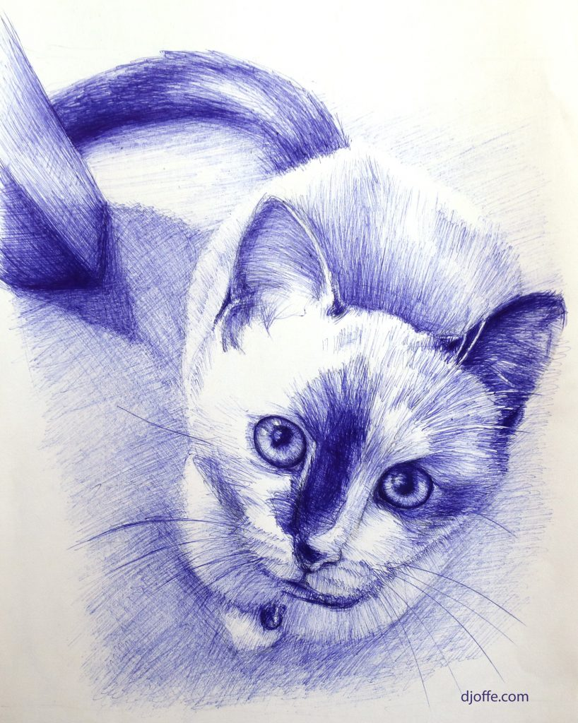 Sketch of cat with pen